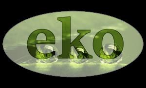 Usługi z zakresu ochrony środowiska