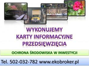 Sporządzene karty informacyjnej przedsięwzięcia