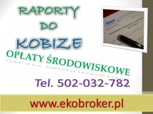 Kobize, zgłoszenie, rejestracja, raport