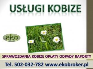 Cennik usług Kobize